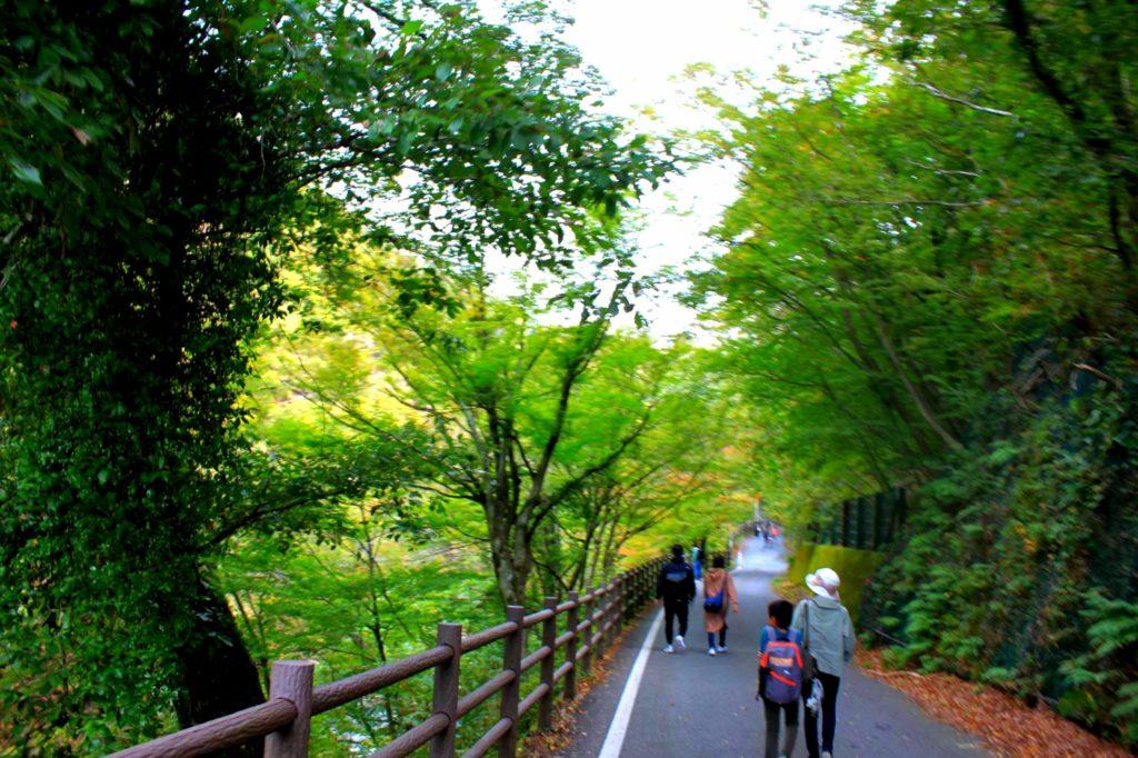 【昇仙峡】山梨の人気No1パワースポット観光地!