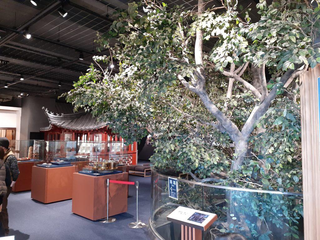 ふじのくに茶の都ミュージアム 展示物 F2