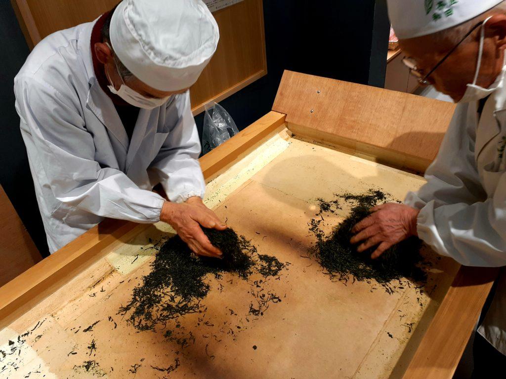 ふじのくに茶の都ミュージアムで手もみ体験
