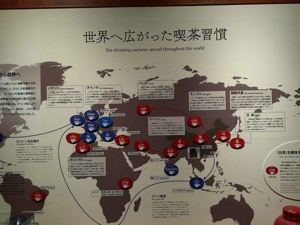 ふじのくに茶の都ミュージアムの喫茶