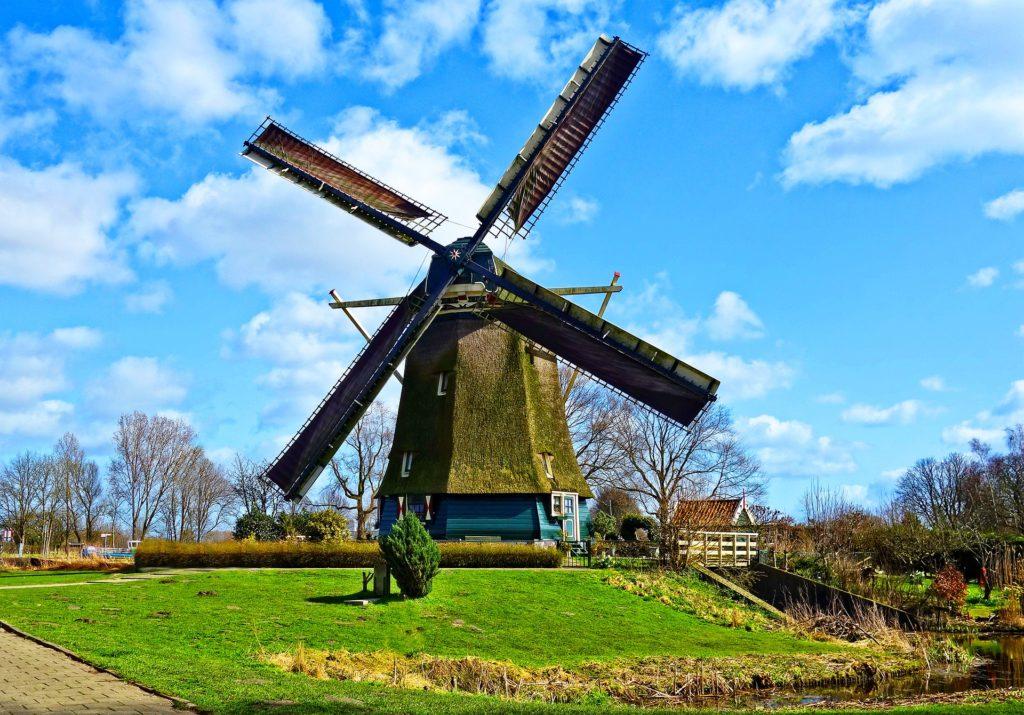【イエナプラン教育】オランダの幸福教育!家庭でやれる方法!