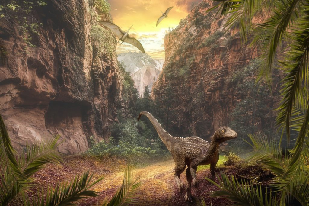 【福井県立恐竜博物館】所要時間からお土産まで!見所を全部教えます!