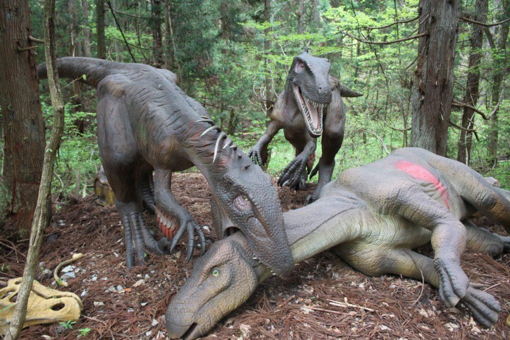 福井県立恐竜博物館 見どころ紹介