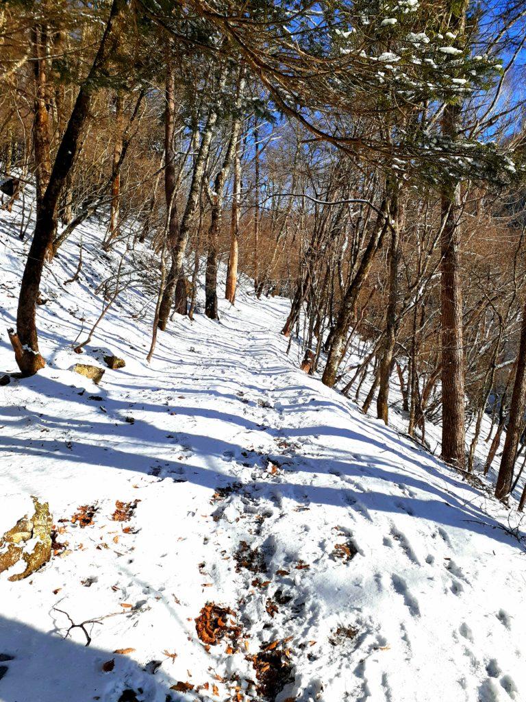 【大菩薩嶺】初心者向け日帰り登山コース 雪山登山道