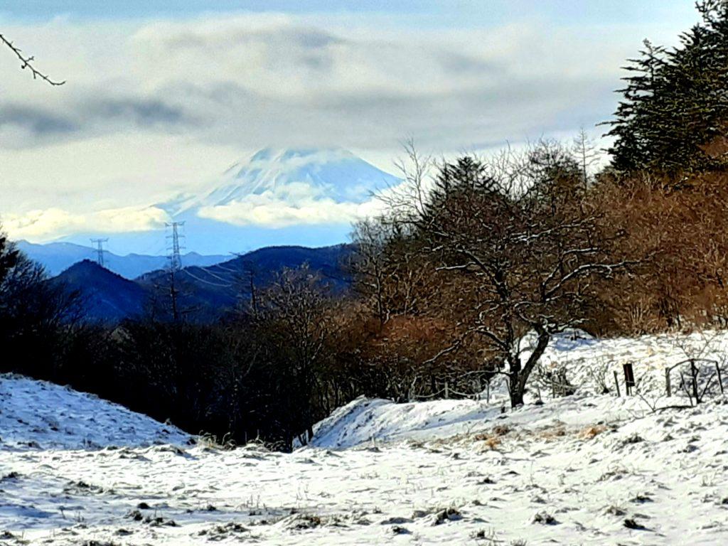 【大菩薩嶺】初心者向け日帰り登山コース 丸川峠 富士山