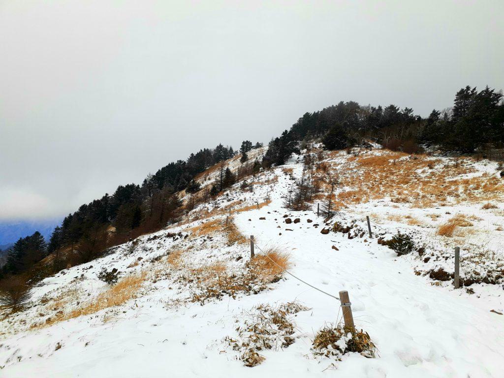 【大菩薩嶺】初心者向け日帰り登山コース 雪山 尾根