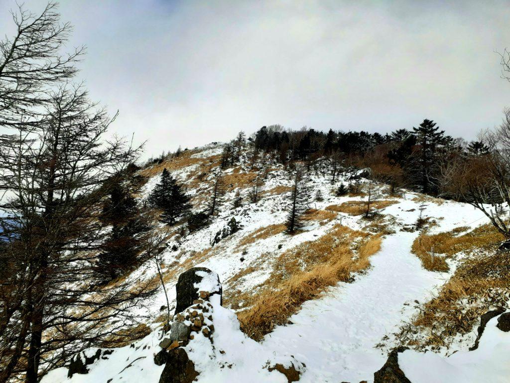 【大菩薩嶺】初心者向け日帰り登山コース 山頂 尾根