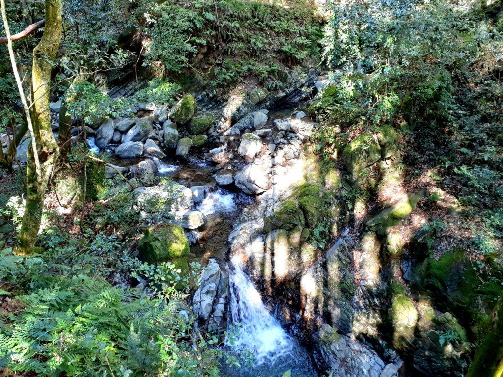 静岡市の竜爪山の登山、長尾川