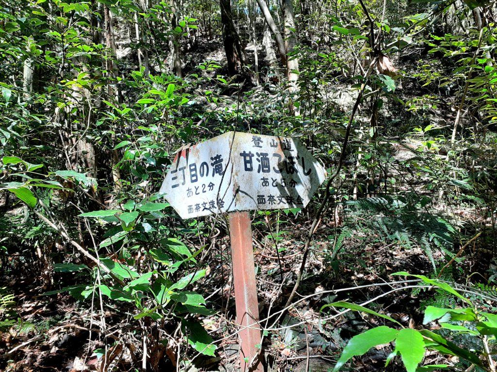 静岡市の竜爪山の登山、案内