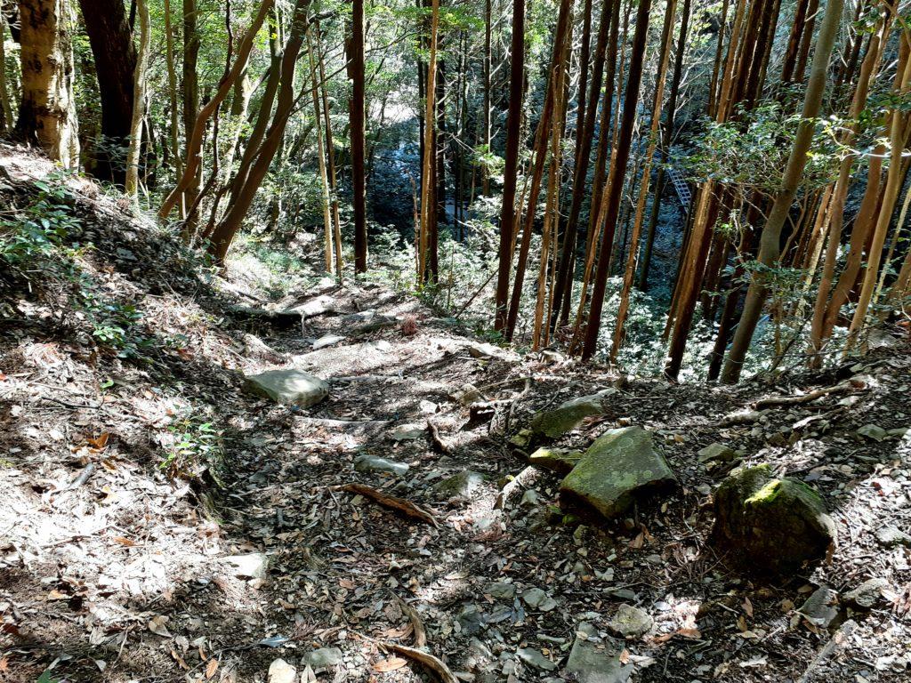 静岡市の竜爪山の登山