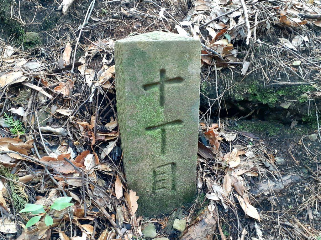 静岡市の竜爪山の登山、十丁目