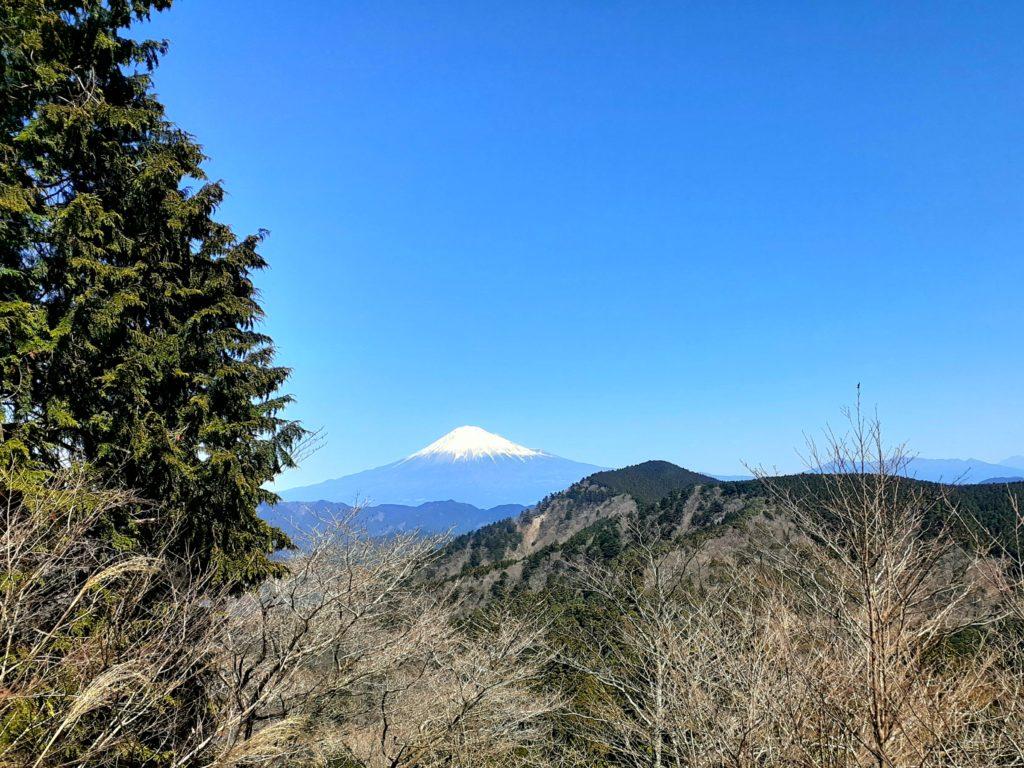 静岡市の竜爪山の登山、富士山
