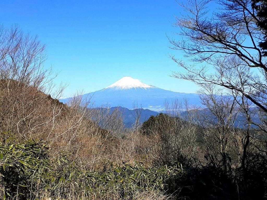 静岡市の竜爪山の登山、文珠岳、富士山