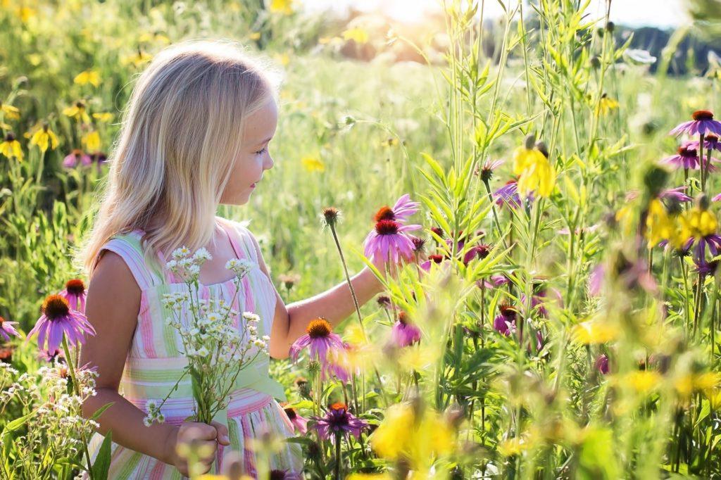幼児教育で何をすればいいのか?大自然の中で遊ばせる