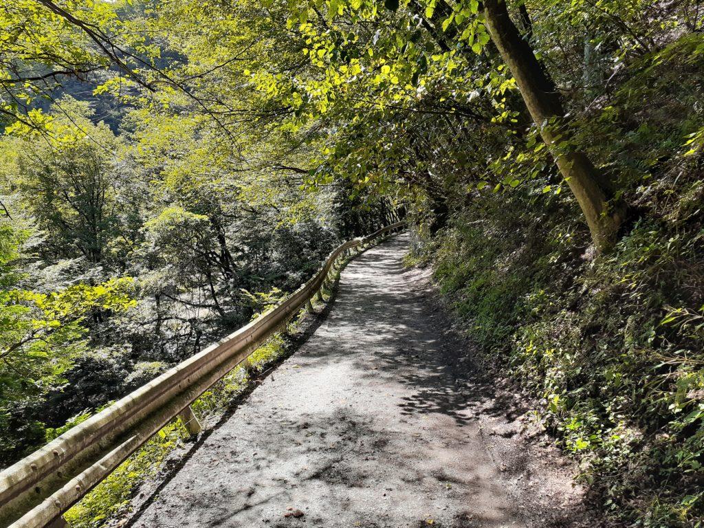 日向山登山道 入口