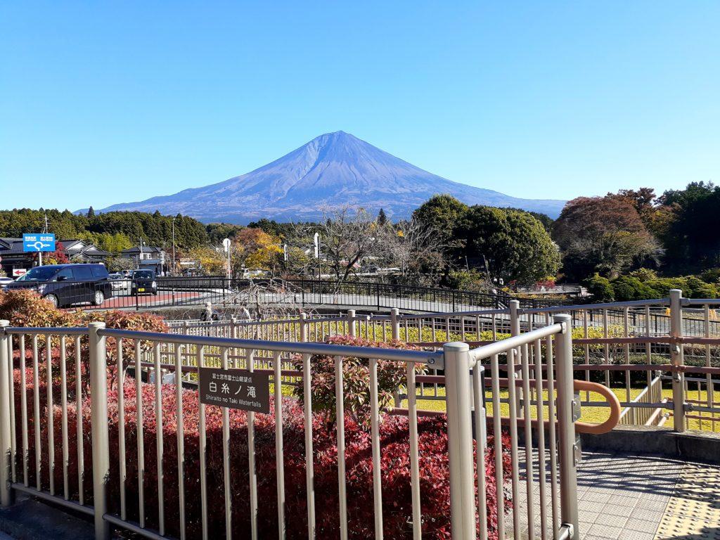 【ペット同伴観光】富士山白糸の滝は犬連れOK! 紅葉もきれいです