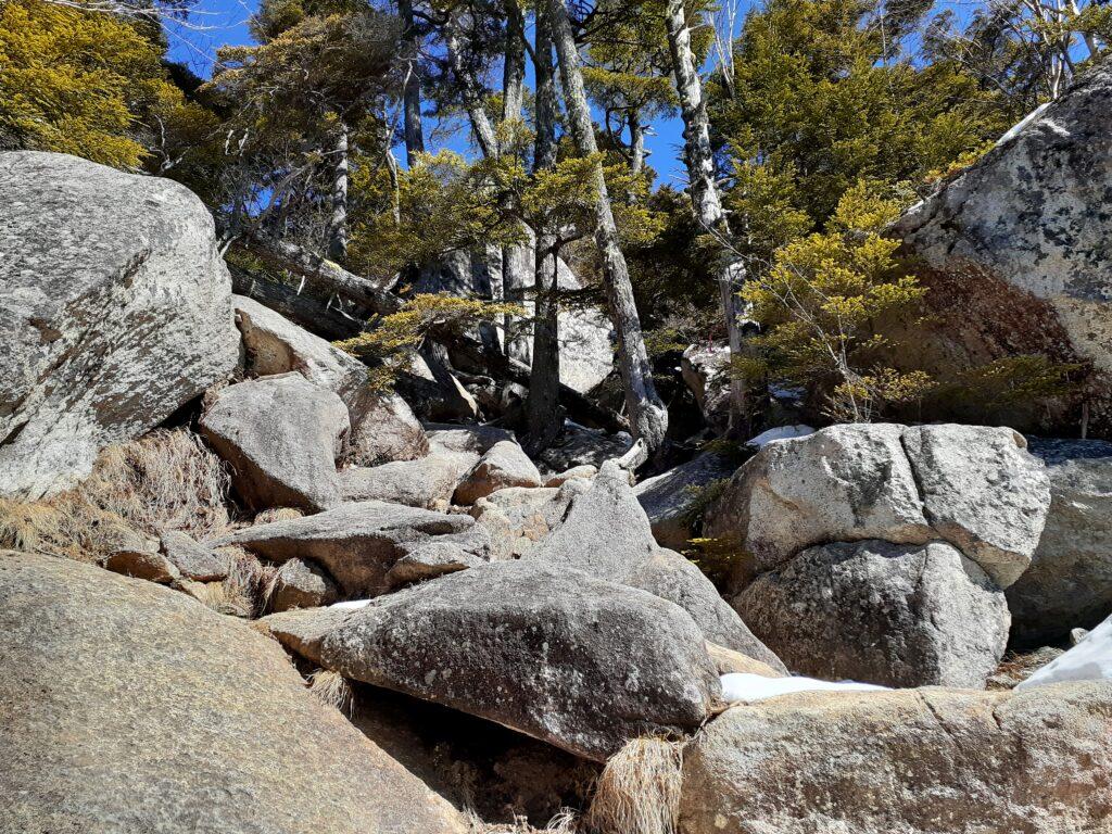 瑞牆山は初心者でも登れる日帰り登山 岩場の道