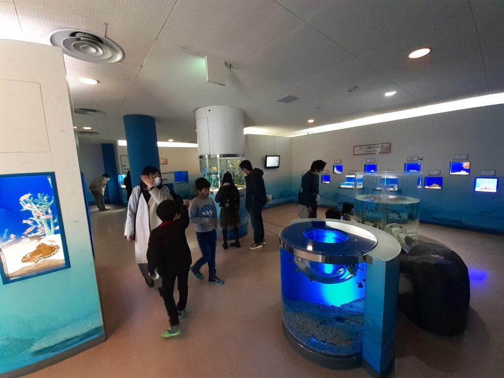 東海大学海洋科学博物館 展示物