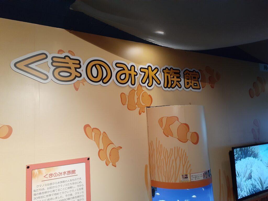 東海大学海洋科学博物館 くまのみ水族館