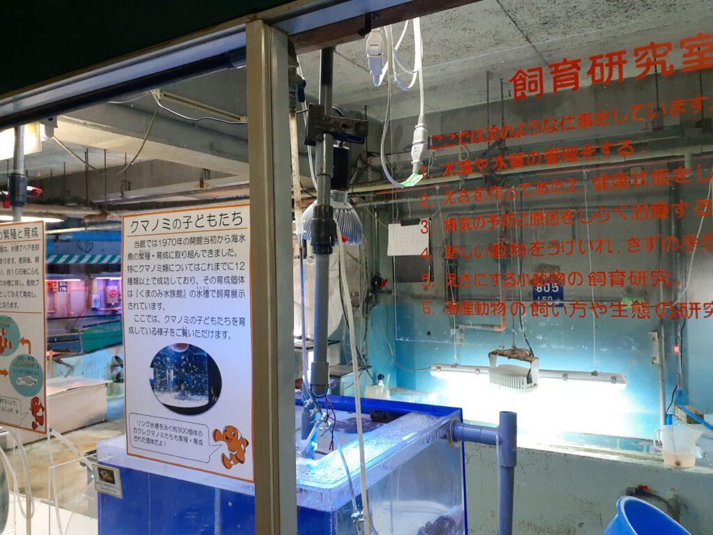 東海大学海洋科学博物館 飼育研究室