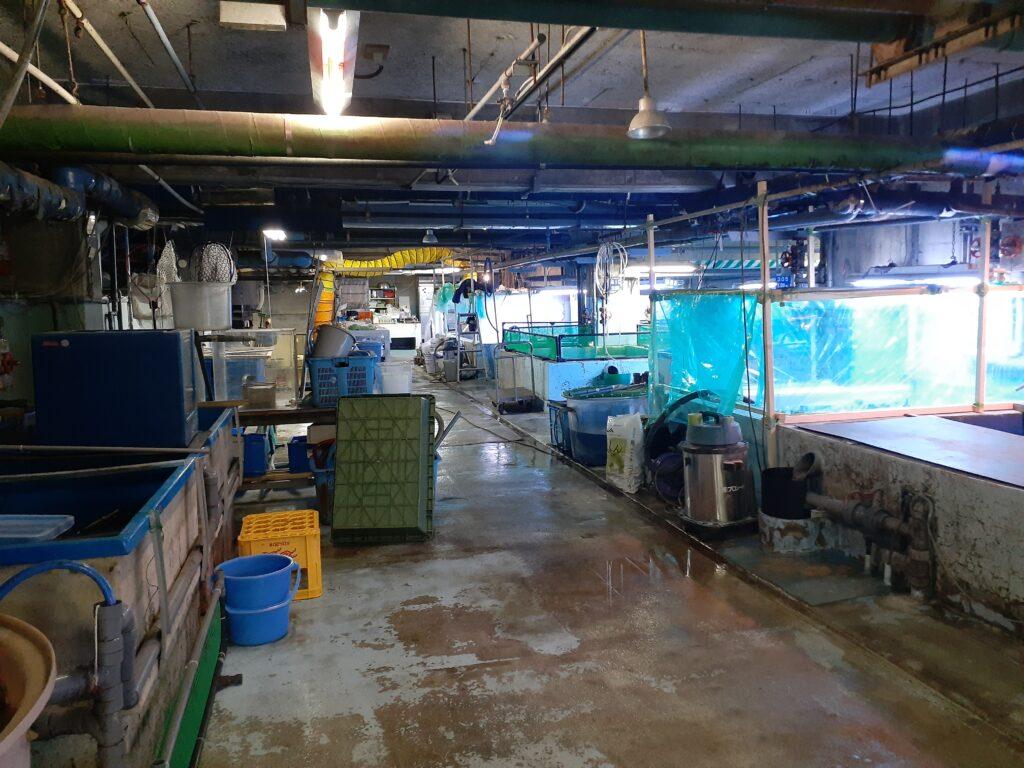 東海大学海洋科学博物館 研究室
