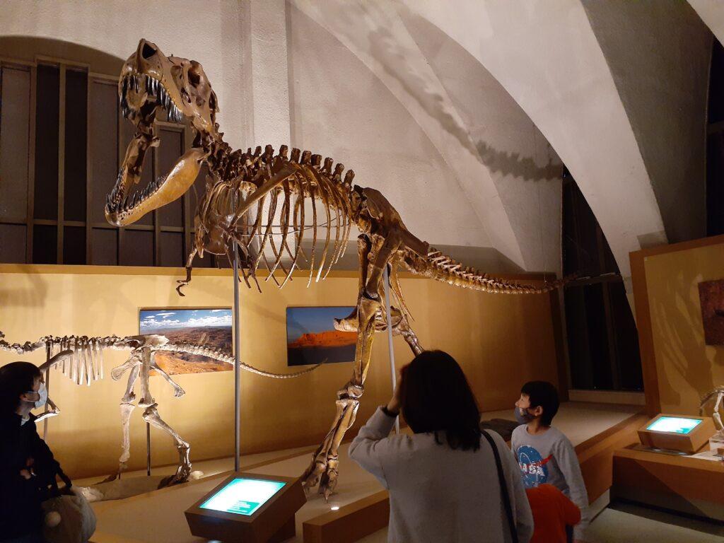 【東海大学自然史博物館の口コミ】恐竜好きの子供におすすめ観光地!