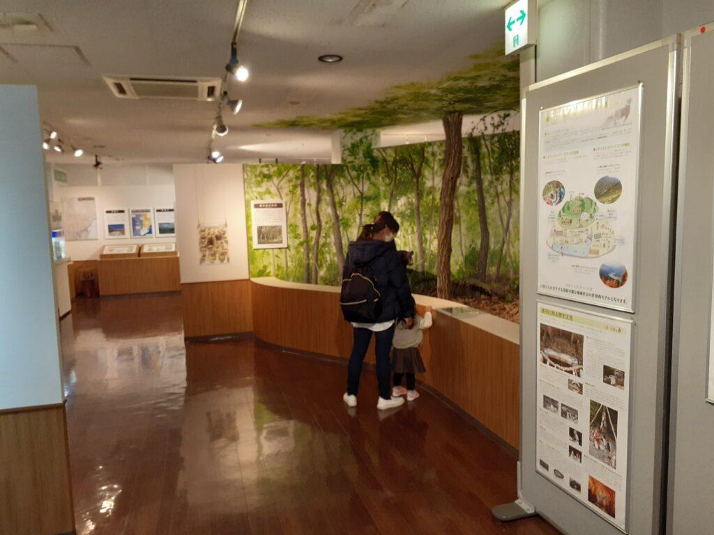 東海大学自然史博物館 静岡県の自然