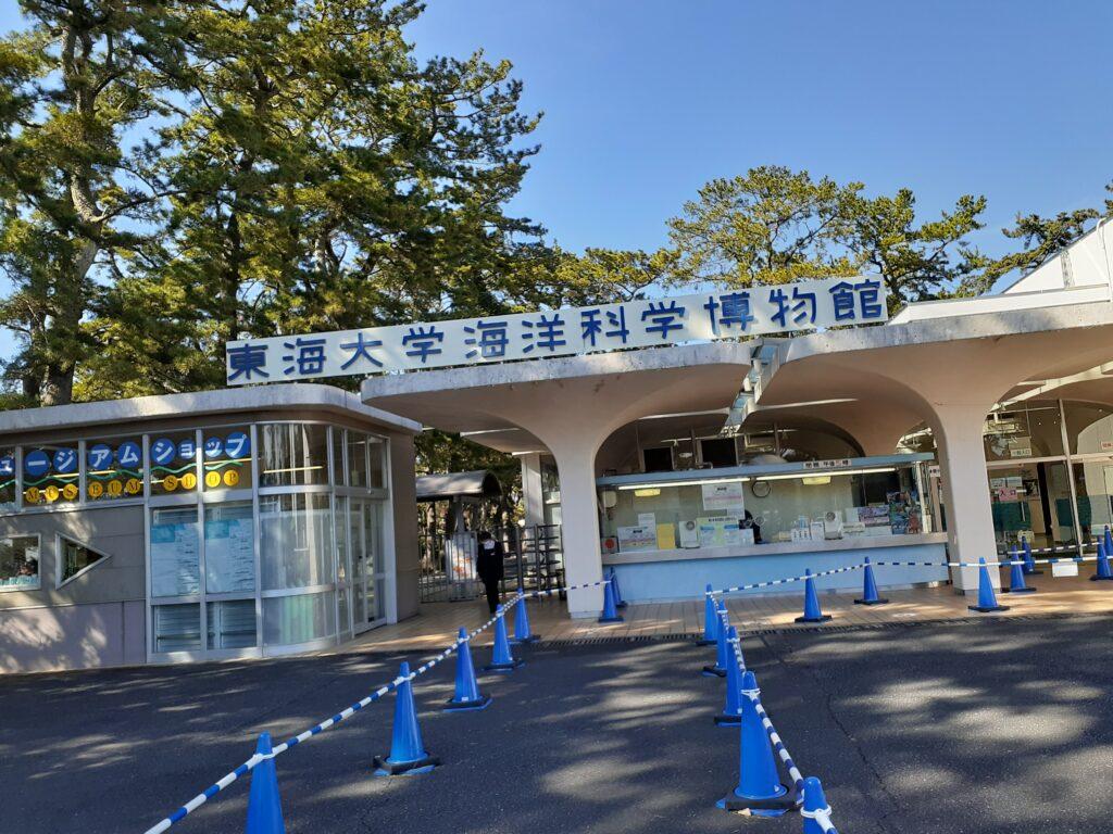 東海大学海洋科学博物館 入口