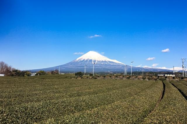 【地方移住先ランキング1位の静岡】県内の住みたい田舎ベスト5!