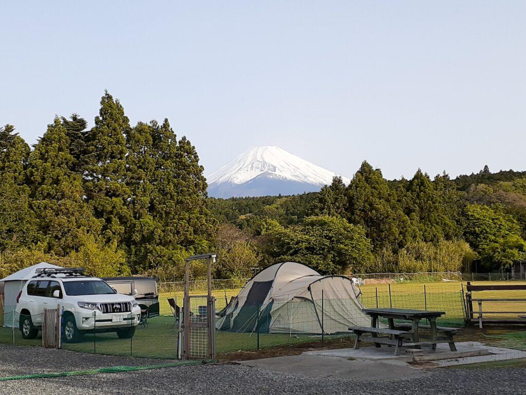 【ドッグフィールド合衆国】実際のキャンプの口コミ!富士山見える