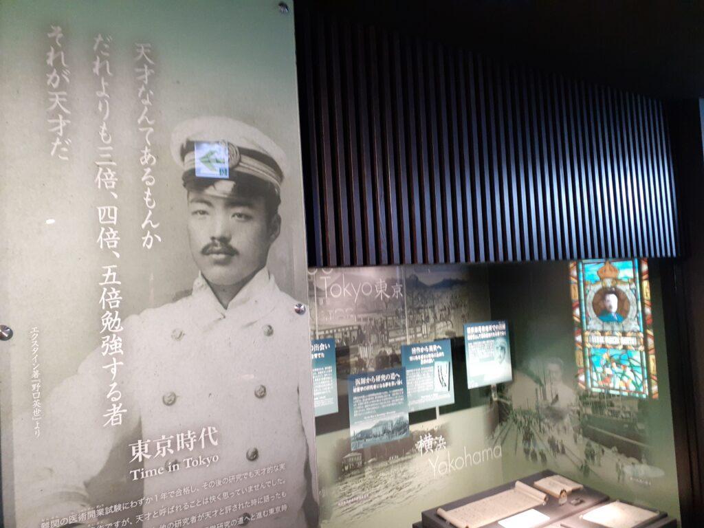 野口英世記念館。東京時代!
